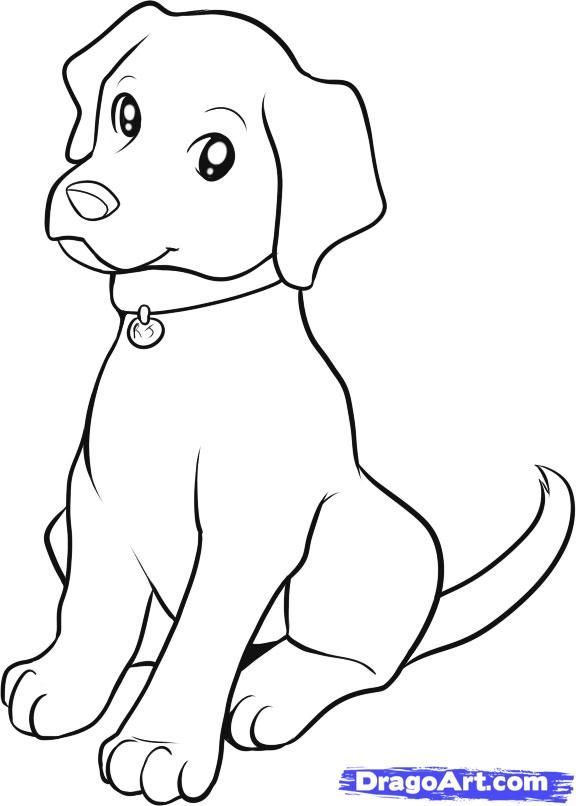 How To Draw A Lab By Dawn Puppy Coloring Pages Dog
