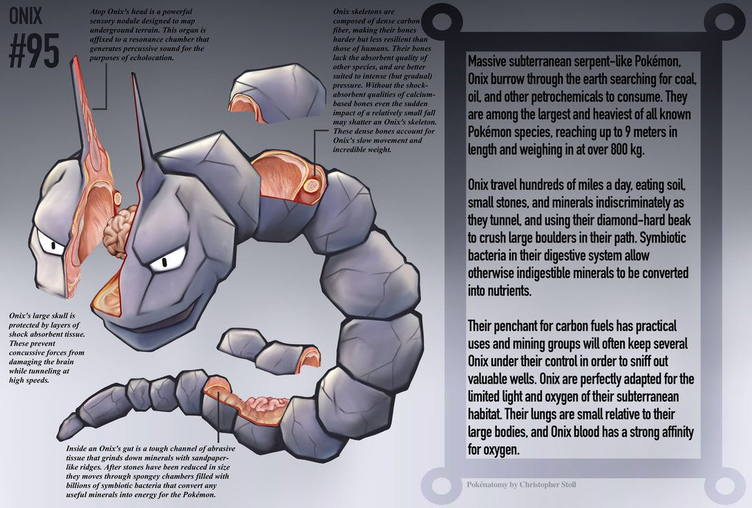 This Book Is Now Available For High Quality Digital Download Here If You Like This Work Nbsp Consider Supporting My Art On P Onix Pokemon Pokemon Funny Pokemon