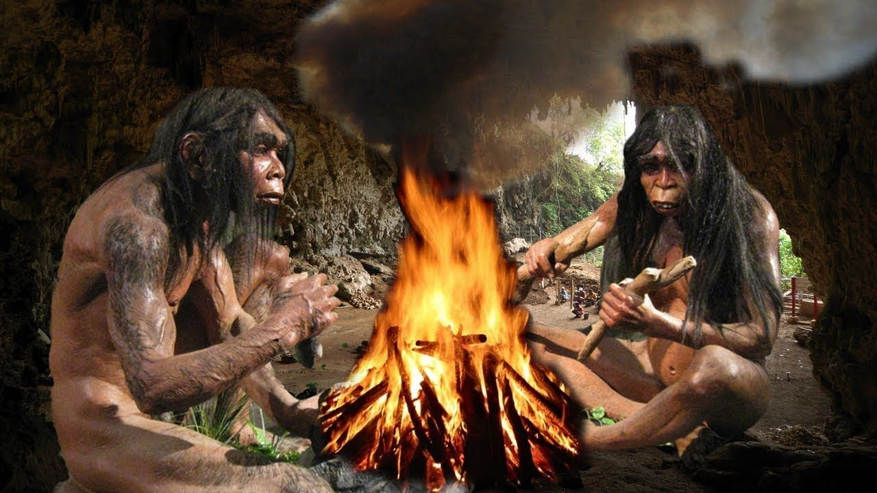 the comparable qualities of humans and neanderthals