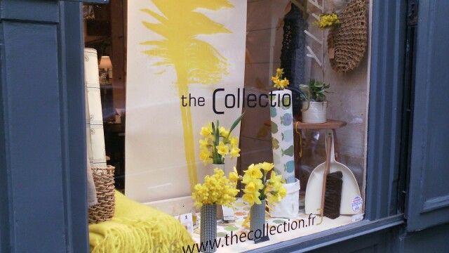 Nouvelle vitrine The Collection 33 rue de Poitou Du jaune bouton d'or (Panneau plume de Tracy Kendall) pour balayer la grisaille et une ambiance jardin d'hiver avec les papiers peints vintage de INKE