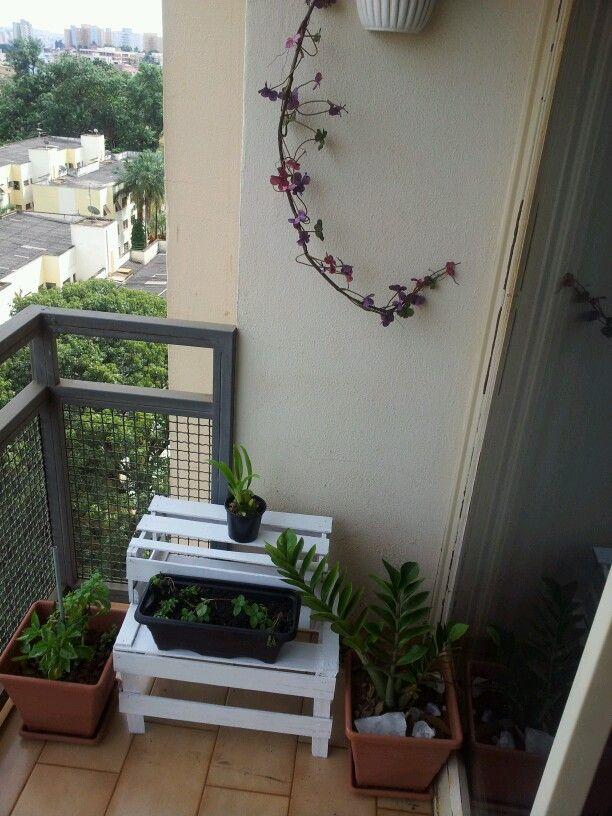 Jardim improvisado. Espaço pequeno e grana curta. Só a tinta estava sobrando. São as boas vindas à minha primeira orquídea Baby.