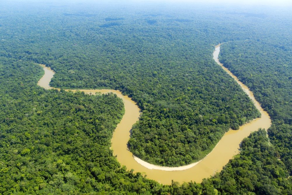 The Amazon Is The Second Longest River In The World With Images