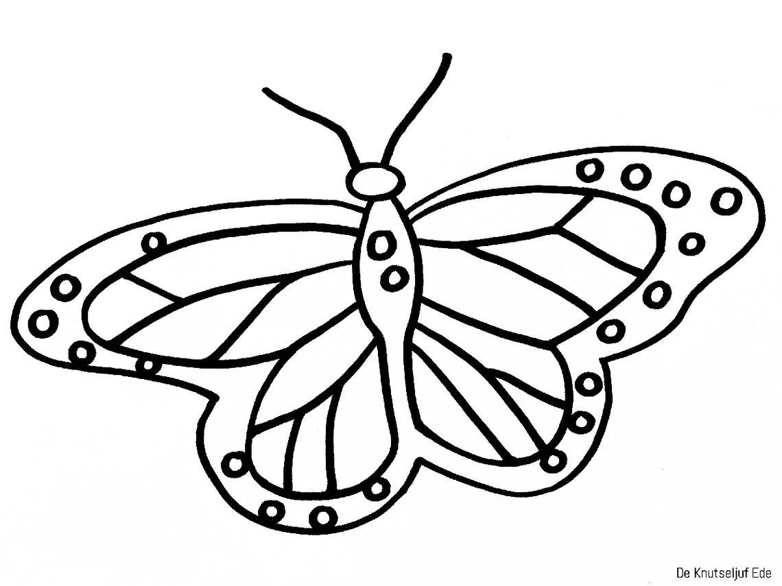 Kom Je Tikkertje Spelen Met Vera De Vlinder Een Huis Voor Harry Kleurplaten Vlinderfeest Vlinders