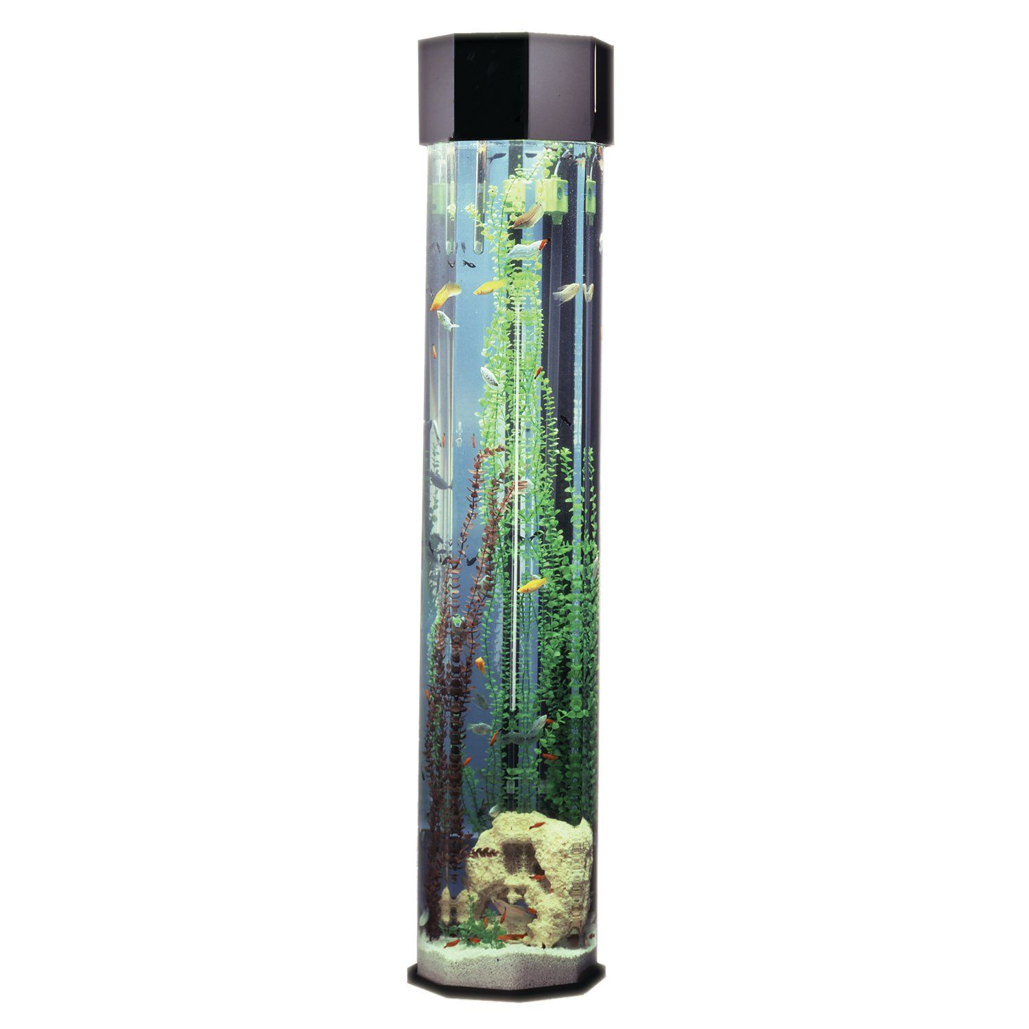 Fish for vertical aquarium - Midwest Tropical 690cl Octagon Aqua Tower Vertical Aquarium Grandfather Clock