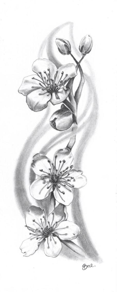 Pin On Drawing