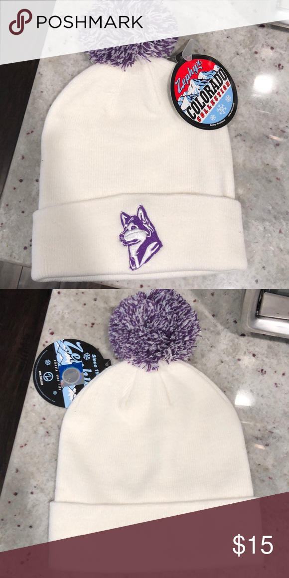 Washington Huskies hat Brand new UW Husky hat with large Pom Pom and tags.  From a smoke free home. Accessories Hats 8bb130fde