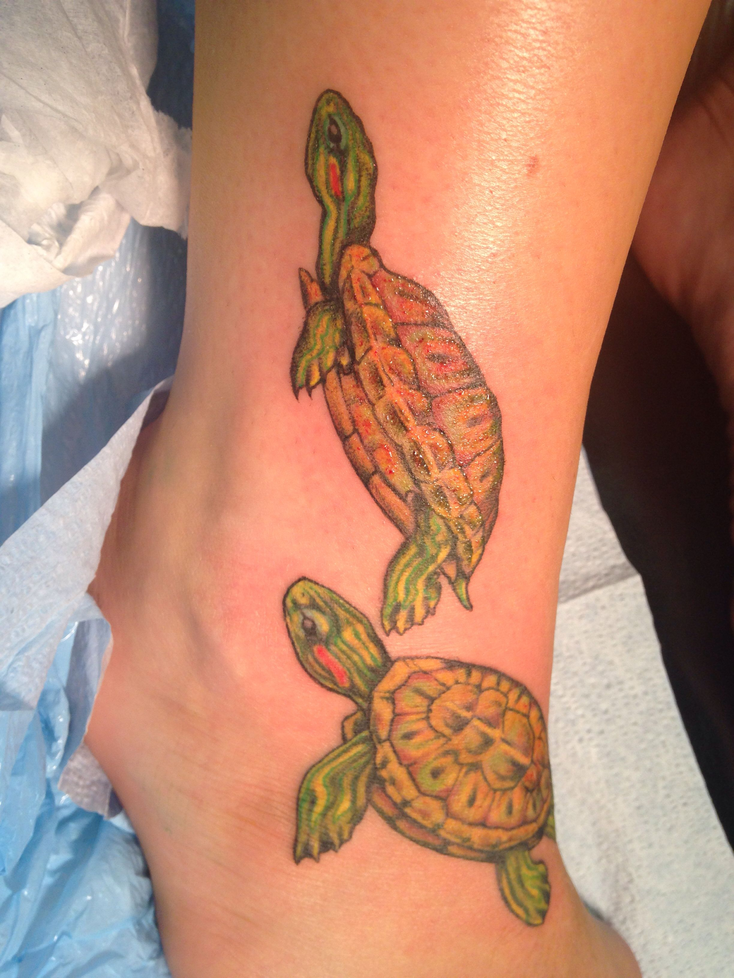 box turtle tattoos pictures to pin on pinterest tattooskid. Black Bedroom Furniture Sets. Home Design Ideas