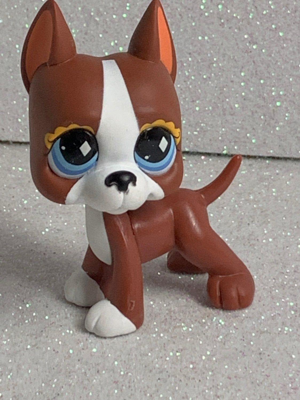 Pin On Littlest Pet Shop Mini Figures [ 1500 x 1124 Pixel ]