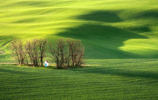 Hypnotizing Beauty Of Moravian Fields In The Czech Republic Marcin - The mesmerising beauty of moravian fields photographed by marcin sobas