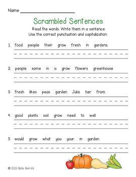 Plant unit unscramble sentences