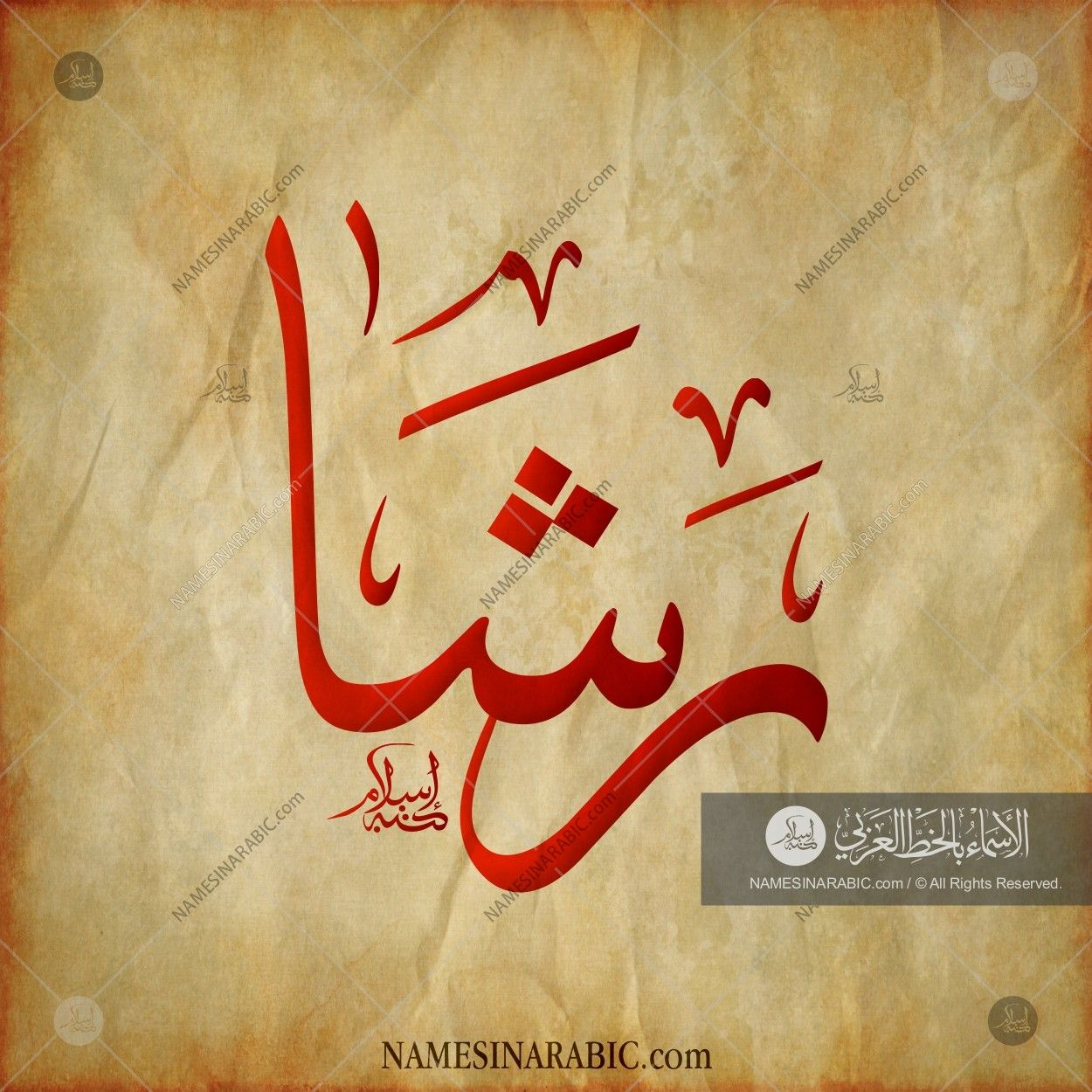 Rasha رشا Names In Arabic Calligraphy Name 1757 Calligraphy Name Name Design Art Calligraphy