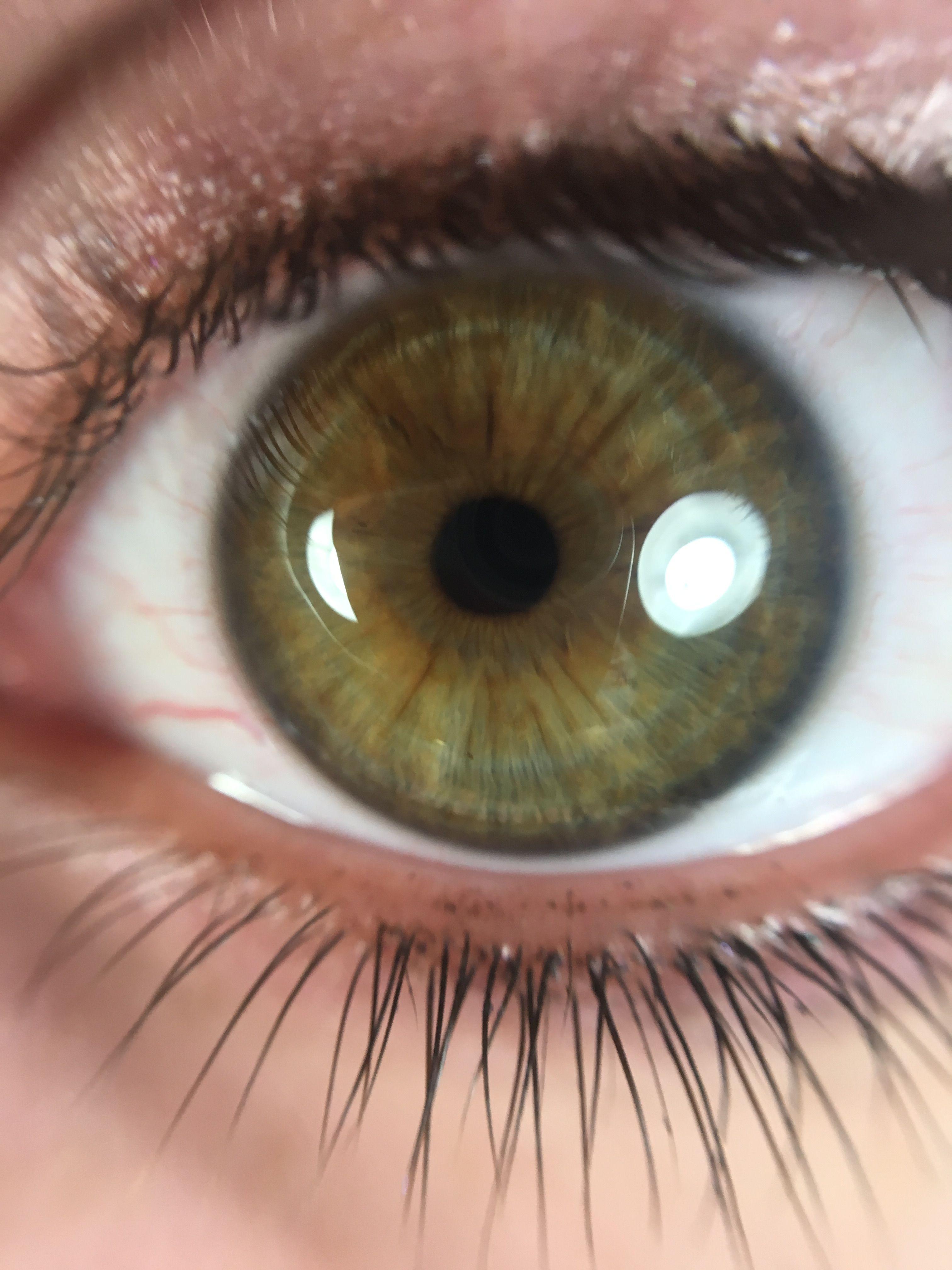 dark winter eye eye patterns dark blue eyes dark