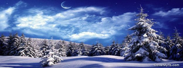 Snow Covered Trees Facebook Cover #fondecranhiver