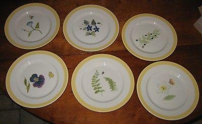 Williams Sonoma Summer Studies set of 6 salad plates