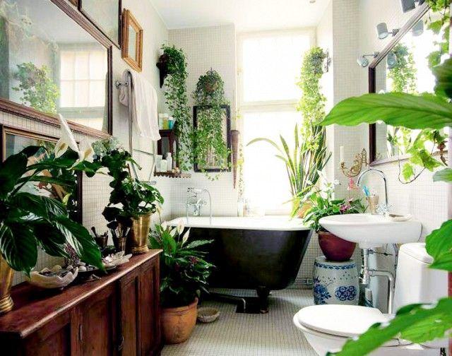 Bathroom with clawfoot tub and plants.