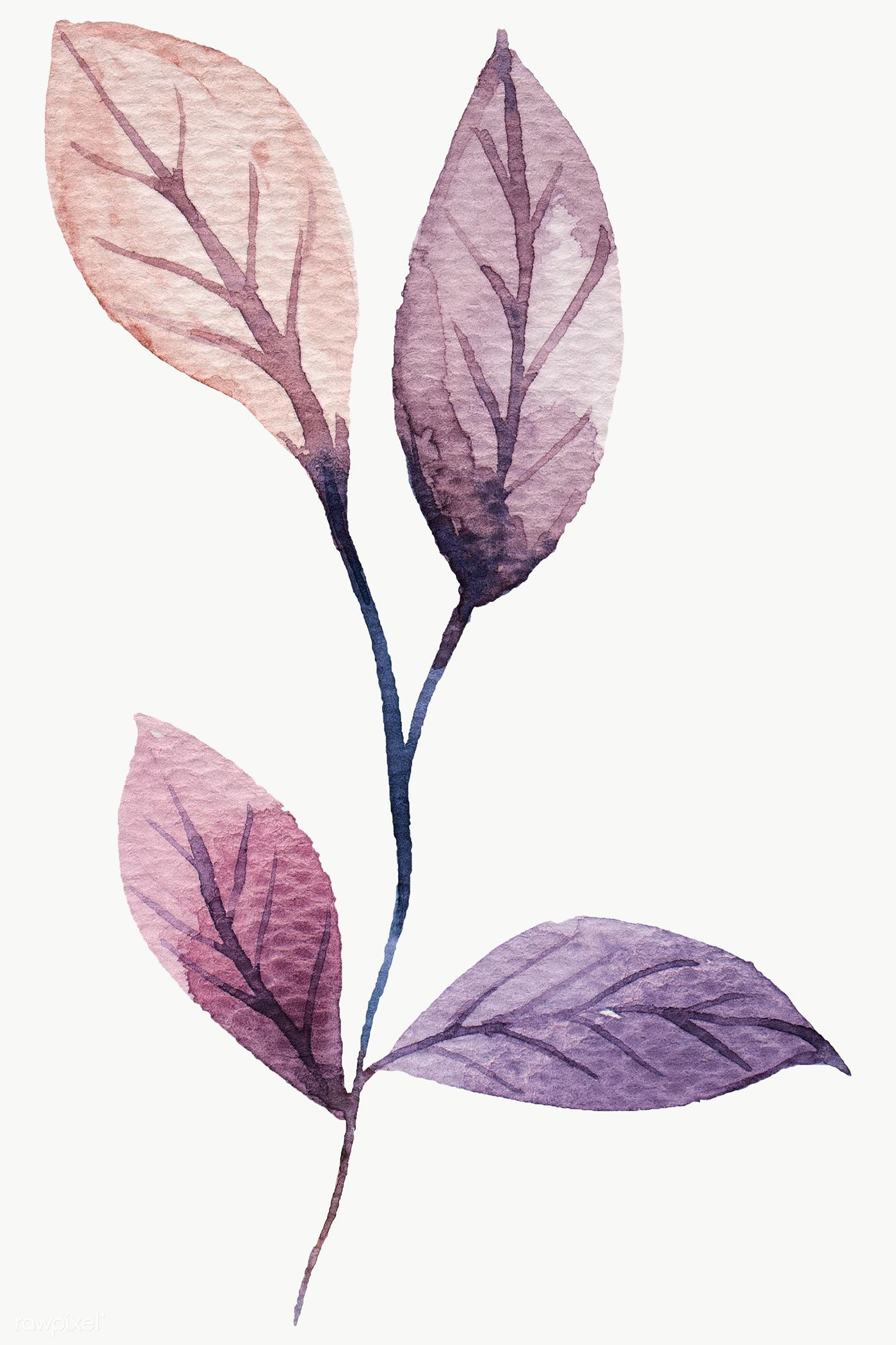 Download Premium Png Of Hand Painted Purple Watercolor Leaf
