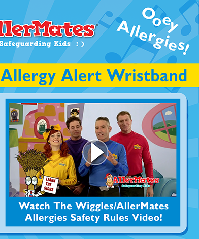 The Wiggles & AllerMates Allergy Alert Wristband