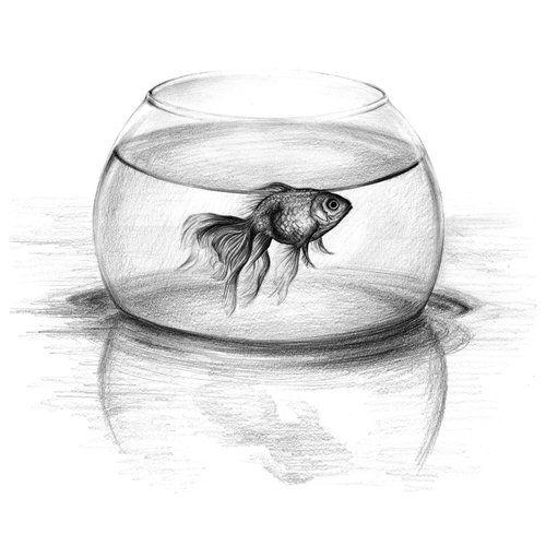 Just One Wish Art Print By Edrawings38 X Small In 2020 Pencil Art Drawings Aquarium Drawing Pencil Drawing Tutorials
