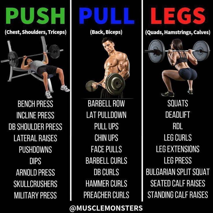 Push Pull Legs Routine Das beste Training zum Aufbau von Masse Split Ganzkörper Männer Frauen  Gym Workout Tips and Routines