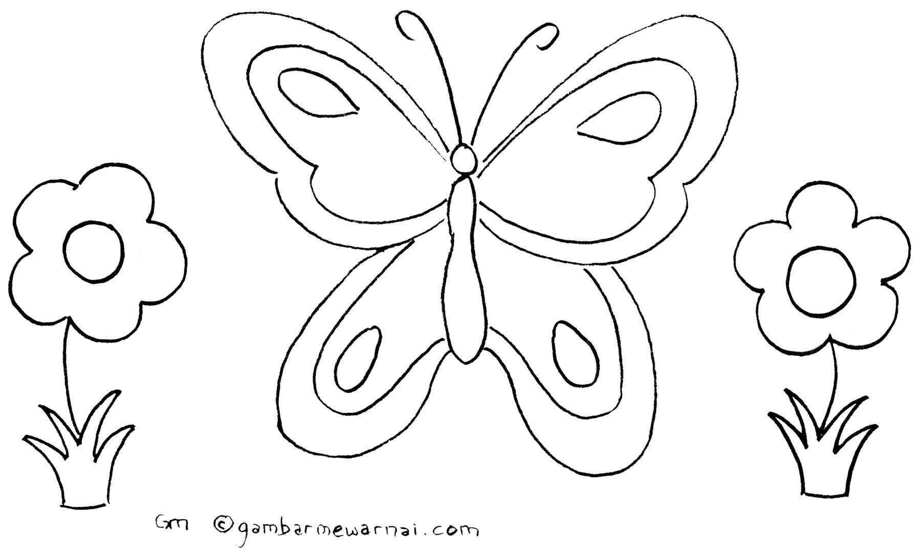 Gambar Mewarnai Kupu Kupu A Beautiful Butterfly Pinterest