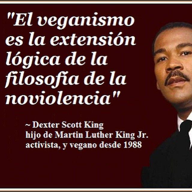 Vuévete Vegan Y Salva El Planeta