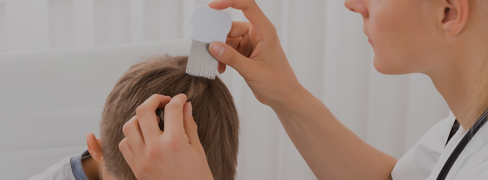 Lice Removal with All Organic Lice Removal Lice LiceTreatment