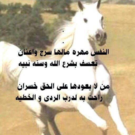 مساءالخير Cute Animals Horses Animals