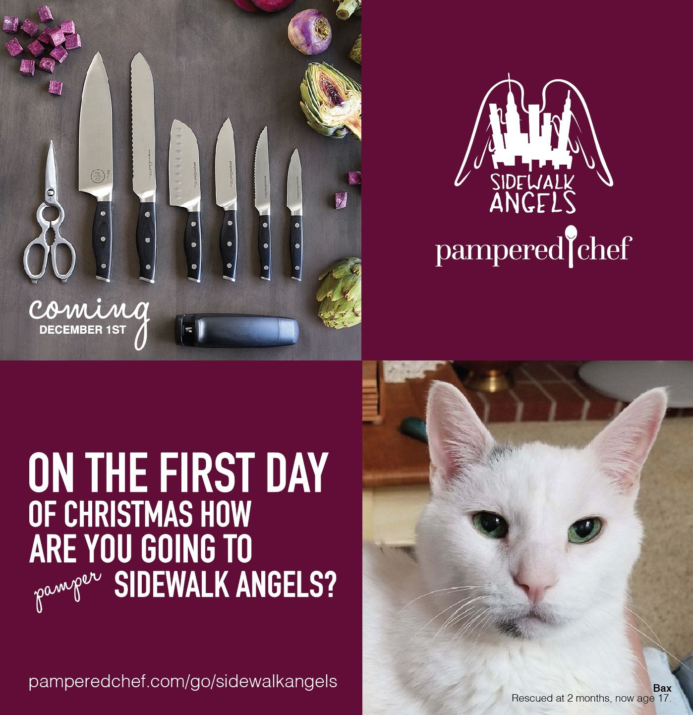 Pampered chef commission