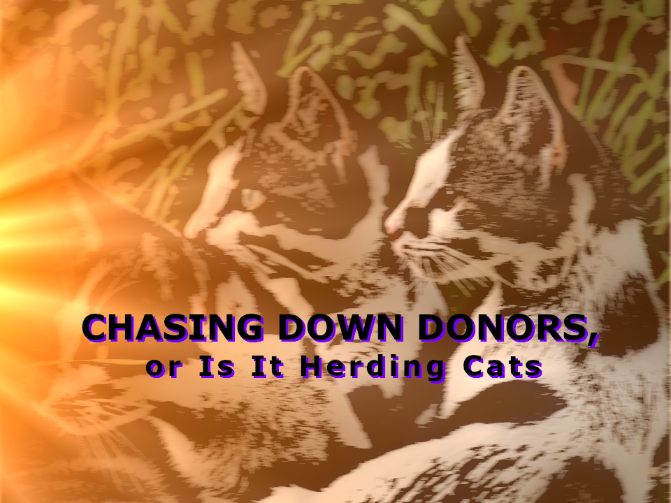 Chasing Down Donors, or Is It Herding Cats Herding cats