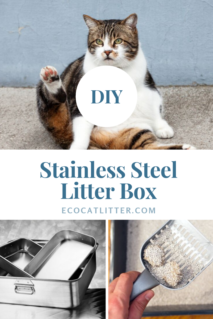 DIY stainless steel litter box Do not let the price stop