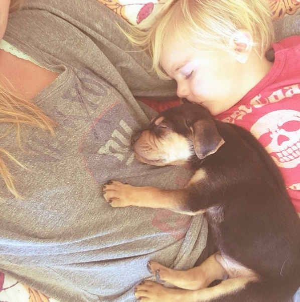 This Puppy And Baby Are The Most Adorable Nap Time Pals Animal - Theo beau cutest animal human pairing ever