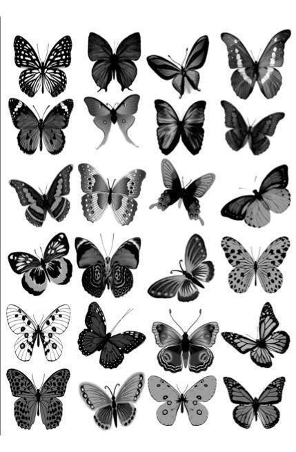 Photo of 24 x LARGE GREY BLACK MIX BUTTERFLY  EDIBLE CUPCAKE TOPPERSRICE WAFER PAPER L25  | eBay