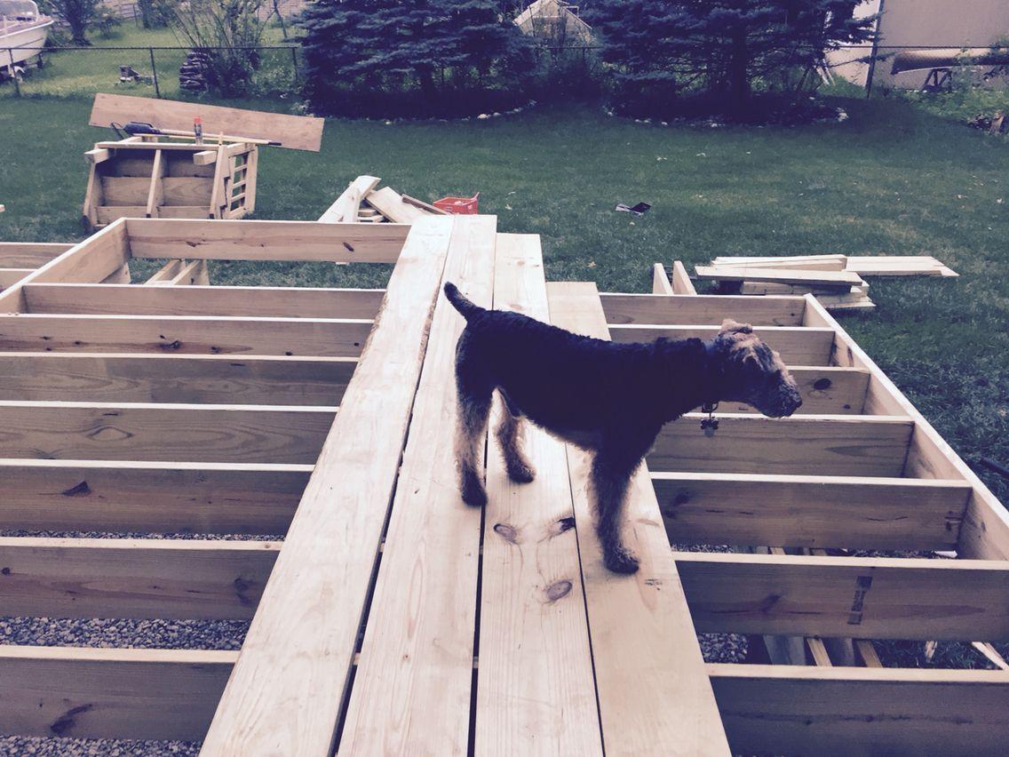 Trex Deck being built 7/15 Island Mist