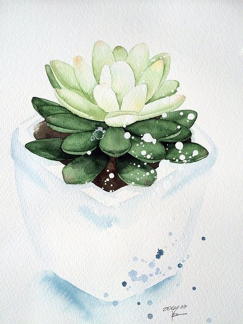 Pin By Alexismka On Sketches Succulent Art Watercolor