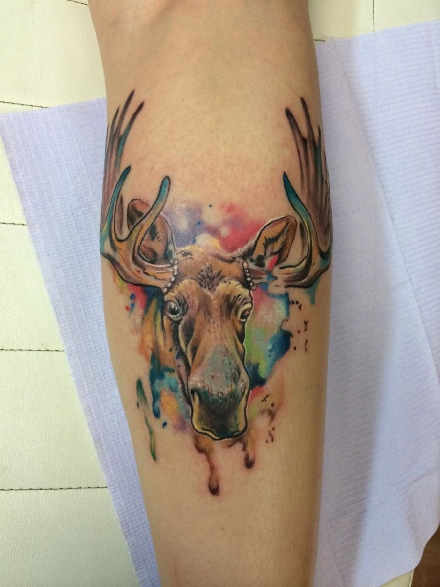 Watercolor Moose Moses Veliz Dallas Tx Moose Tattoo