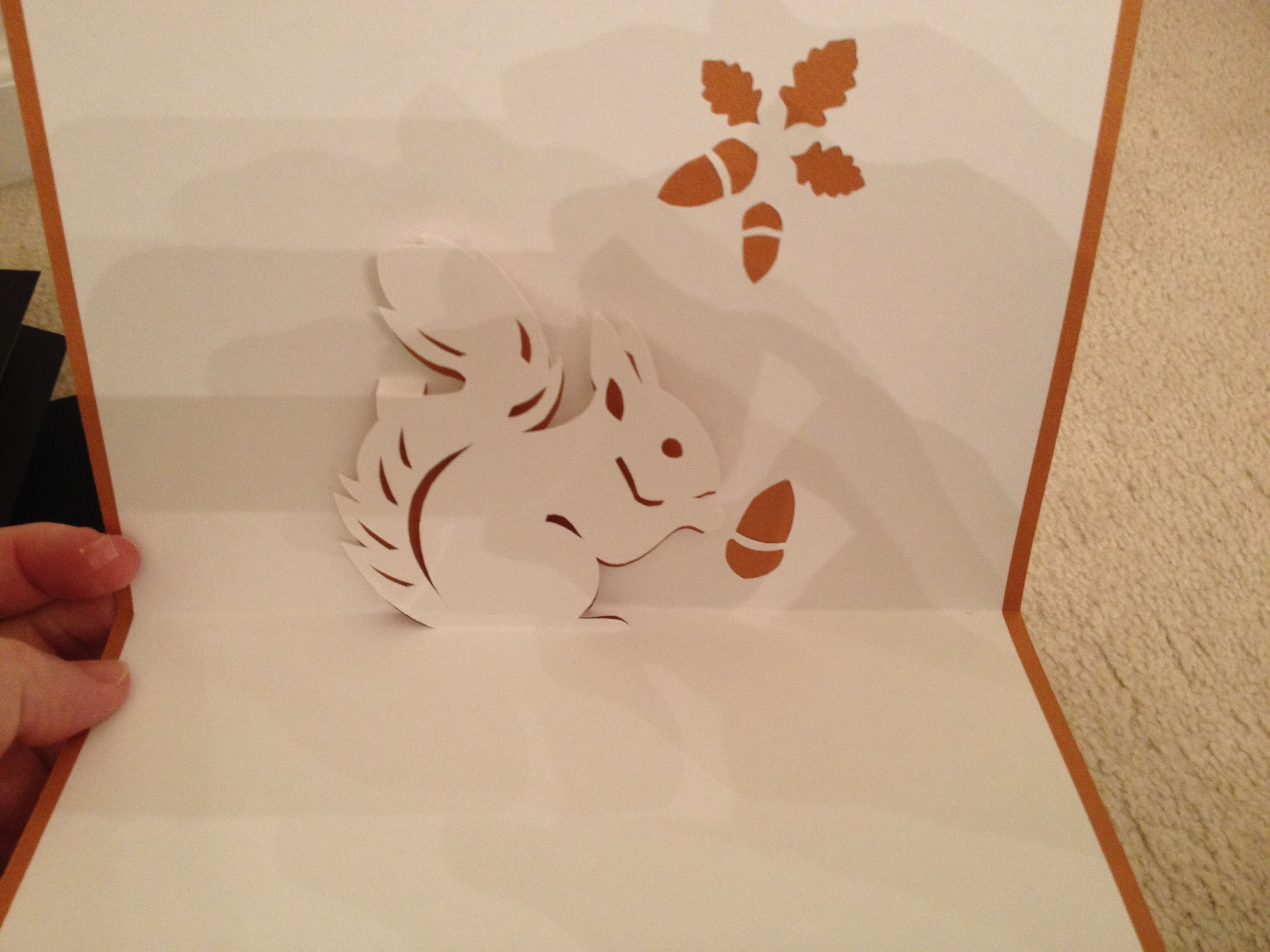 Squirrel pop up card Nana Cards Pinterest