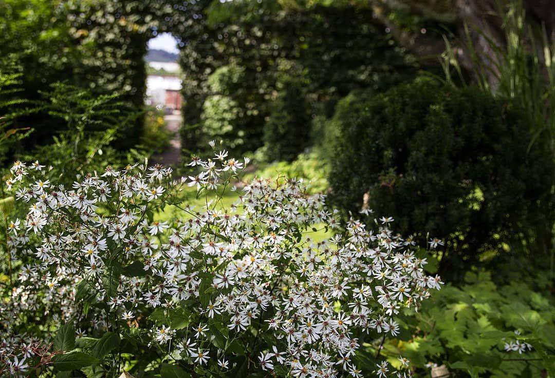 Pin On Beautiful Inspirational Gardens