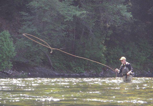 Upper Sacramento Http Www Shastatrout Com Sacramento River Fly Fishing Shasta