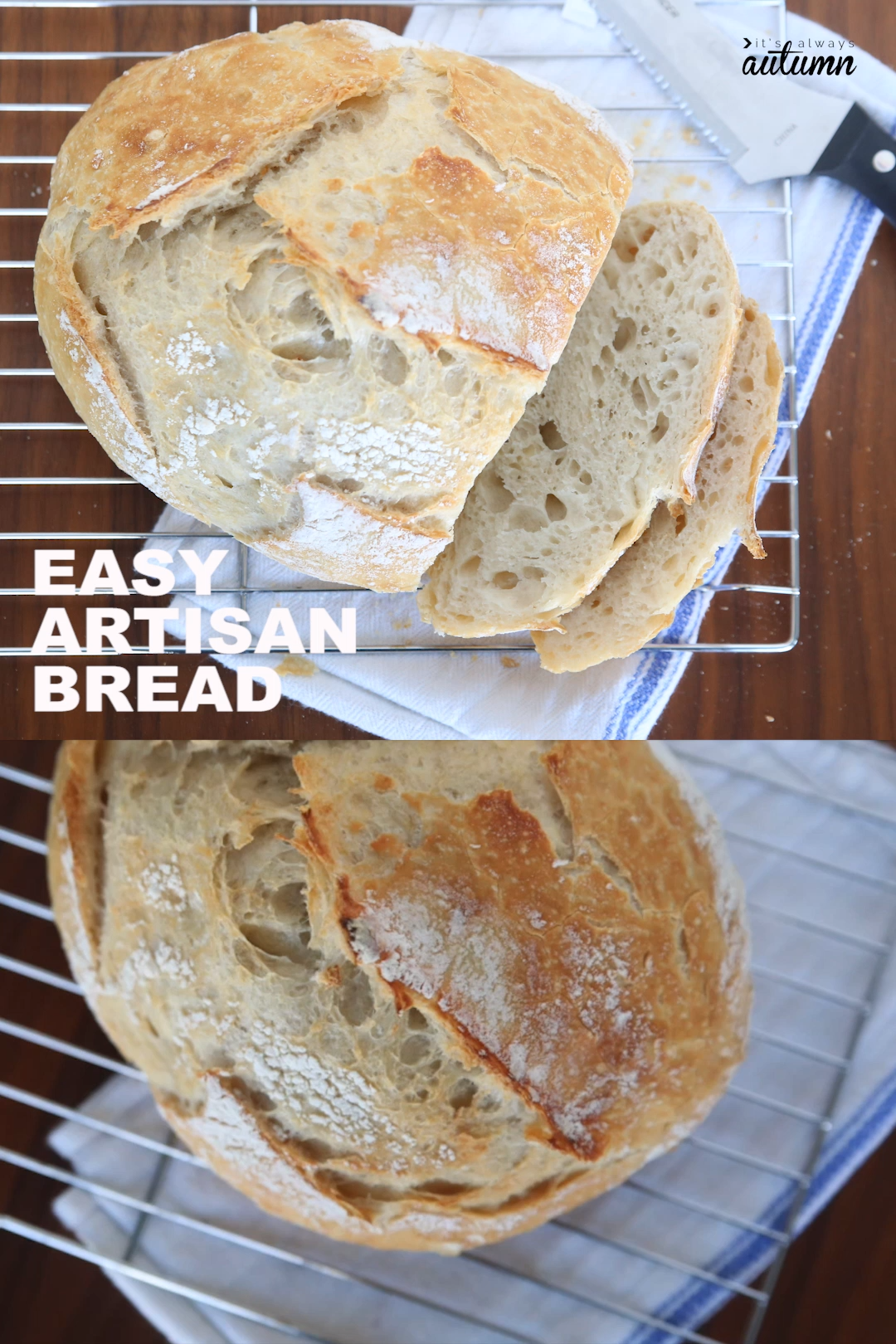 This is the easiest bread you'll ever make! Only 4 ingredients and no kneading. ANYONE can make this bread, and it turns out looking like it came from a fancy bakery. Plus it's simply delicious. #artisanbread #nokneadbread #easybread