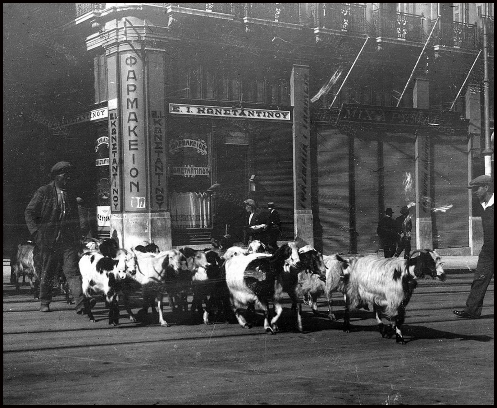 1932 Ένα κοπάδι κατσίκια διασχίζει τη Πεωφόρο ΒασιΠέως Γεωργίου Α