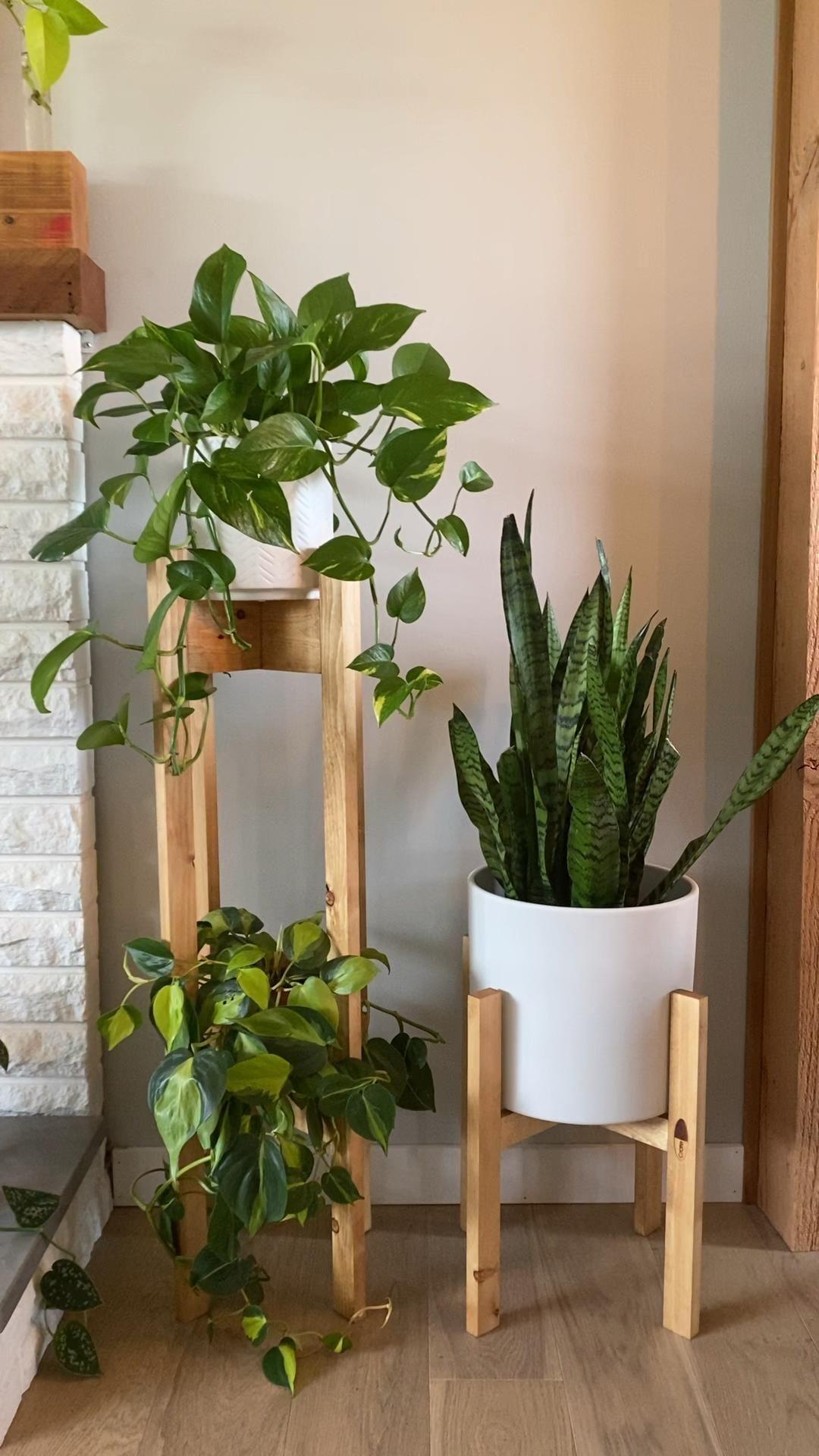 Photo of Custom Home Decor – Plant Decor