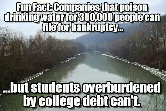 Corporate owned government