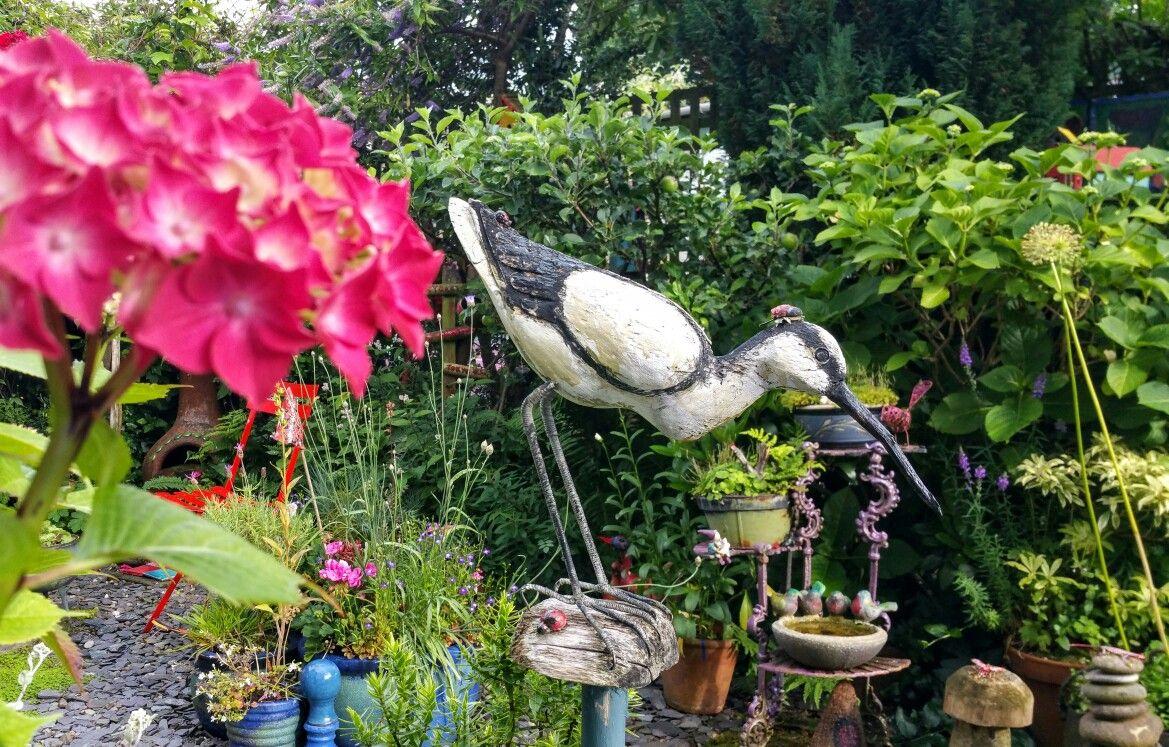 My ibis.