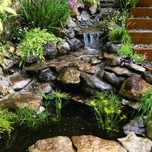 Share for Diy patio pond