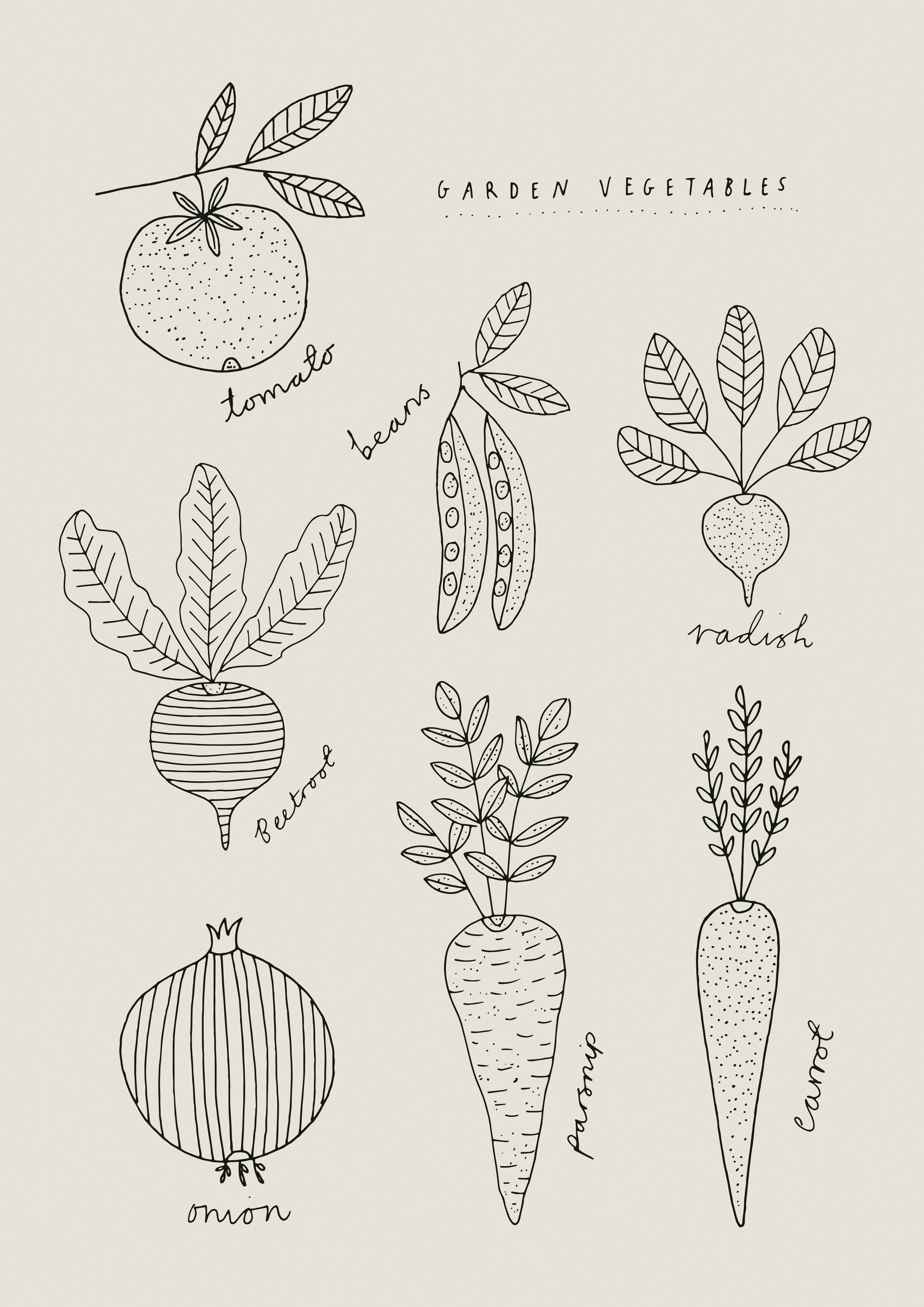 Vegetable Drawings By Ryn Frank Www Rynfrank Co Uk Em 2020 Com