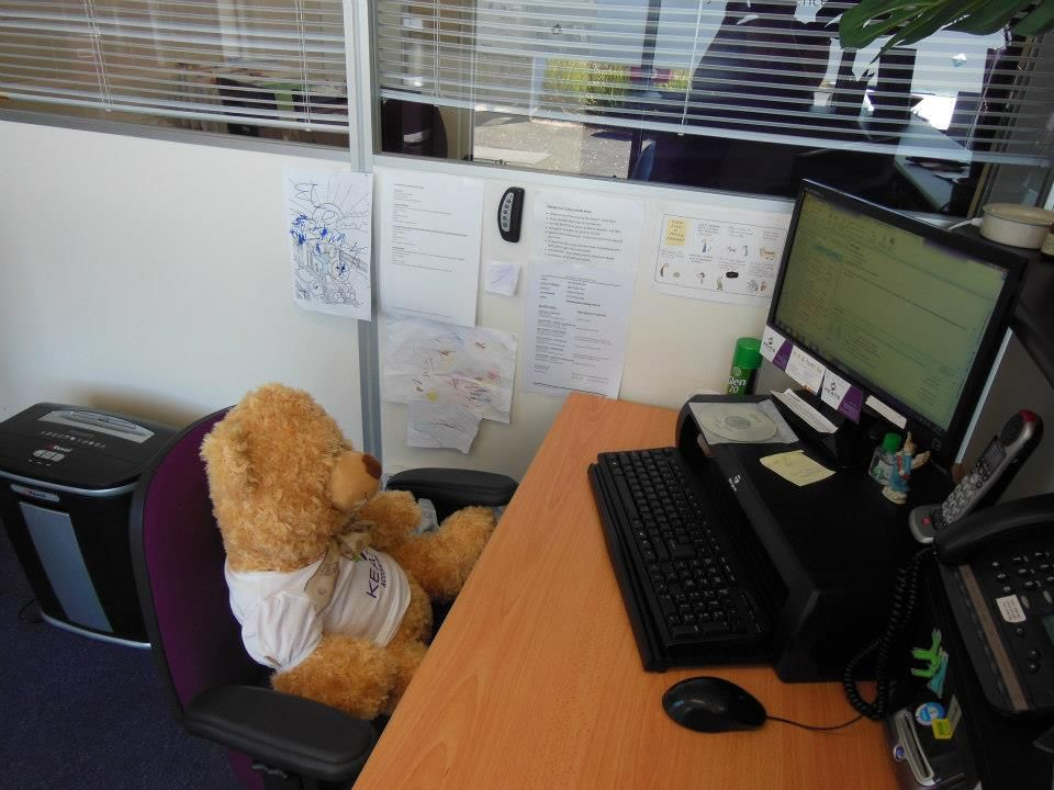 Teddy is our receptionist for today...... but can't answer the phone due to short arms