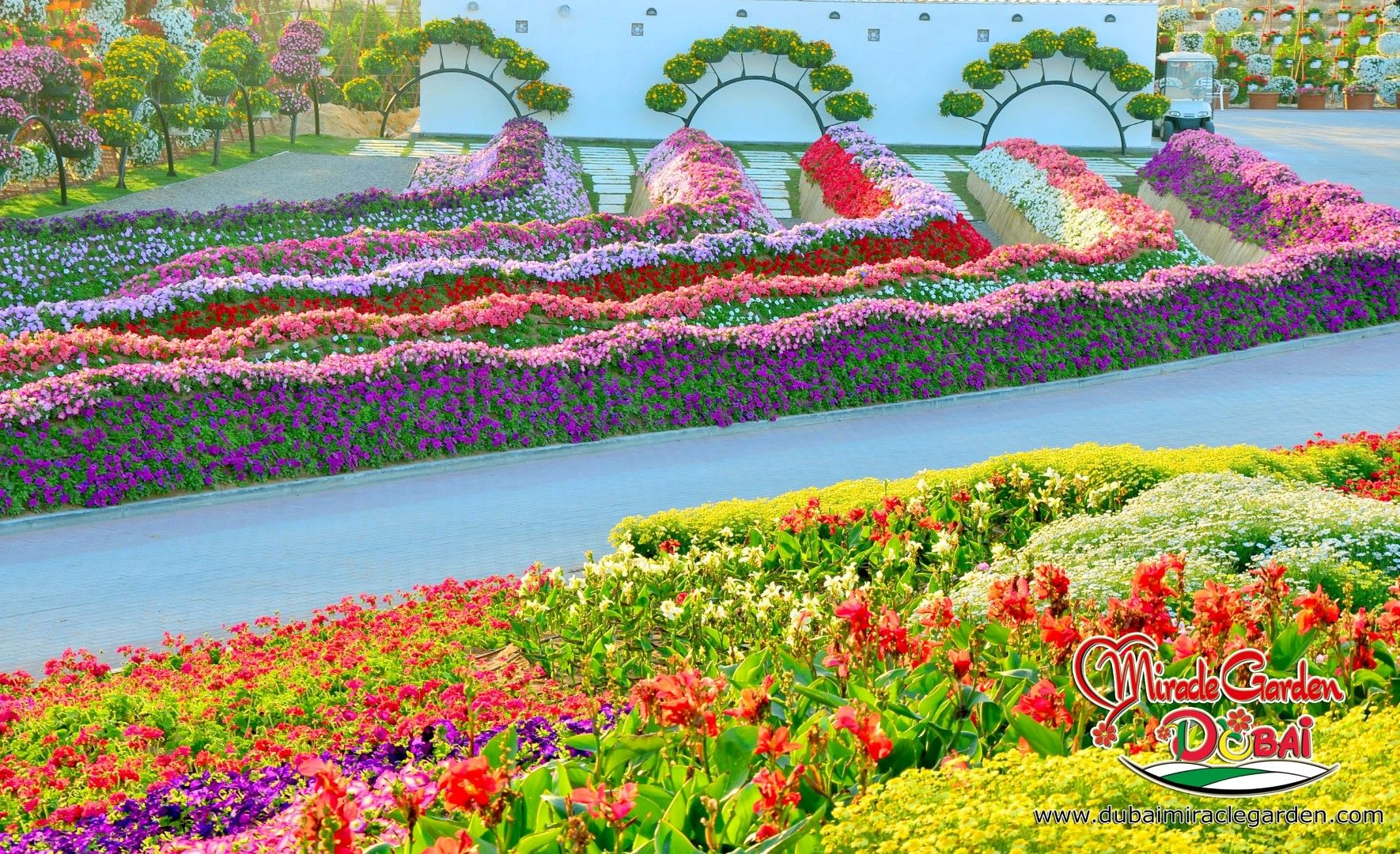 17 Best 1000 images about Dubai Miracle Garden on Pinterest Gardens
