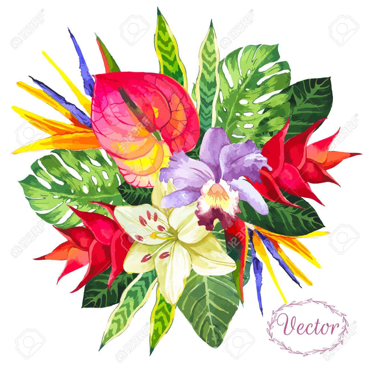 bouquet de fleurs tropicales banque d images vecteurs et bouquet de fleurs dessin couleurl. Black Bedroom Furniture Sets. Home Design Ideas