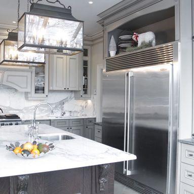 Frigidaire Professional Refrigerator Design Ideas