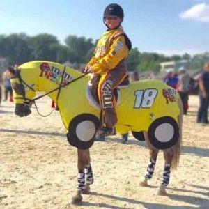Horse Costumes Race Car 1